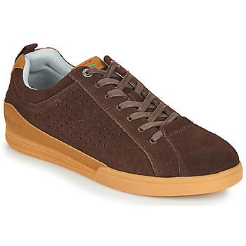 鞋子 男士 球鞋基本款 Kickers TAMPA 棕色