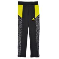 衣服 女孩 紧身裤 adidas Performance 阿迪达斯运动训练 G LEO TIG 黑色