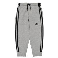 衣服 男孩 厚裤子 adidas Performance 阿迪达斯运动训练 B 3S FL C PT 灰色