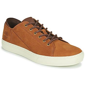 鞋子 男士 球鞋基本款 Timberland 添柏岚 ADV 2.0 CUPSOLE MODERN OX 棕色