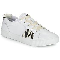鞋子 女士 球鞋基本款 Timberland 添柏岚 SKYLA BAY OXFORD 白色
