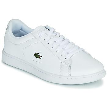 鞋子 女士 球鞋基本款 Lacoste CARNABY EVO BL 21 1 SFA 白色