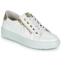 鞋子 女士 球鞋基本款 Dorking VIP 白色 / 银灰色