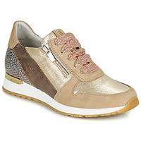 鞋子 女士 球鞋基本款 Dorking VIOLA 金色
