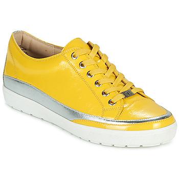 鞋子 女士 球鞋基本款 Caprice 23654-613 黄色 / 银灰色