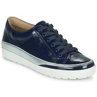鞋子 女士 球鞋基本款 Caprice 23654-889 蓝色