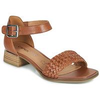鞋子 女士 凉鞋 Caprice 28208-303 棕色