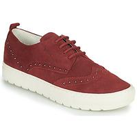 鞋子 女士 球鞋基本款 Geox 健乐士 D BREEDA 波尔多红