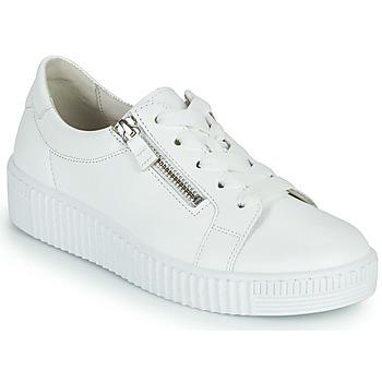 鞋子 女士 球鞋基本款 Gabor 嘉宝 6333421 白色