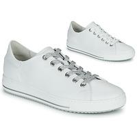 鞋子 女士 球鞋基本款 Gabor 嘉宝 6651550 白色