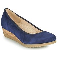 鞋子 女士 平底鞋 Gabor 嘉宝 6264146 蓝色