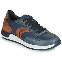 鞋子 男孩 球鞋基本款 Geox 健乐士 J ALBEN BOY 蓝色