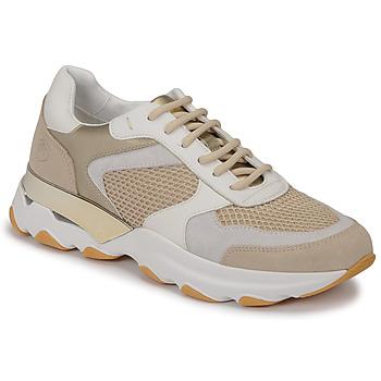 鞋子 女士 球鞋基本款 Lumberjack SWAY 米色 / 白色