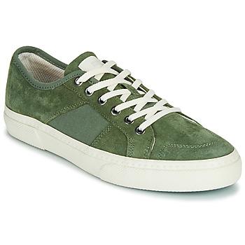 鞋子 男士 球鞋基本款 Globe SURPLUS 绿色