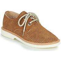 鞋子 女士 球鞋基本款 Armistice Stock derby 棕色