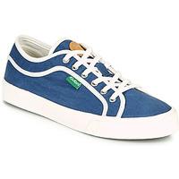 鞋子 女士 球鞋基本款 Kickers ARVEIL 海蓝色