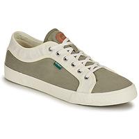 鞋子 男士 球鞋基本款 Kickers ARVEIL 卡其色 / 白色