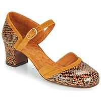 鞋子 女士 高跟鞋 Chie Mihara TROMPETA 棕色