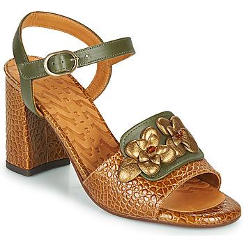 鞋子 女士 凉鞋 Chie Mihara FADIMA 棕色