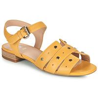 鞋子 女士 凉鞋 Geox 健乐士 D WISTREY SANDALO C 黄色