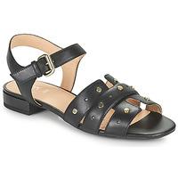 鞋子 女士 凉鞋 Geox 健乐士 D WISTREY SANDALO C 黑色