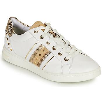 鞋子 女士 球鞋基本款 Geox 健乐士 D JAYSEN A 白色 / 金色