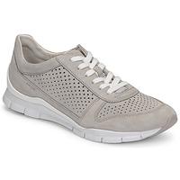 鞋子 女士 球鞋基本款 Geox 健乐士 D SUKIE B 灰色