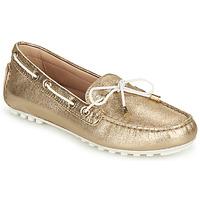 鞋子 女士 皮便鞋 Geox 健乐士 D LEELYAN C 金色 / 白色