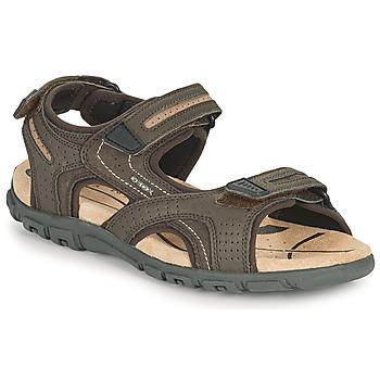 鞋子 男士 运动凉鞋 Geox 健乐士 UOMO SANDAL STRADA D 棕色 / 米色