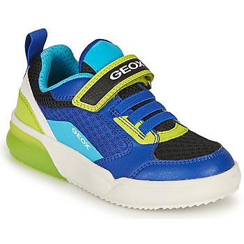 鞋子 男孩 球鞋基本款 Geox 健乐士 GRAYJAY BOY 蓝色 / 闪光绿