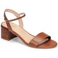 鞋子 女士 凉鞋 Jonak ANKER 棕色