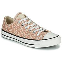 鞋子 女士 球鞋基本款 Converse 匡威 CHUCK TAYLOR ALL STAR CANVAS BRODERIE OX 米色
