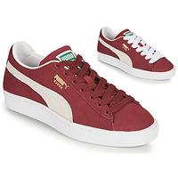 鞋子 球鞋基本款 Puma 彪马 SUEDE 波尔多红