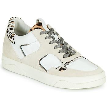 鞋子 女士 球鞋基本款 MAM'ZELLE ARTIX 白色 / Leopard