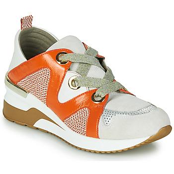 鞋子 女士 球鞋基本款 MAM'ZELLE VELODE 米色 / 橙色
