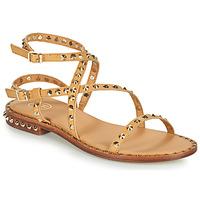 鞋子 女士 凉鞋 Ash 艾熙 PETRA 棕色
