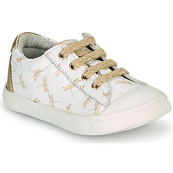 鞋子 女孩 球鞋基本款 GBB MATIA 白色