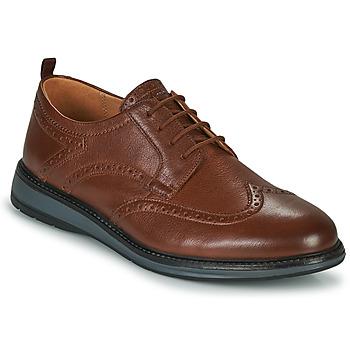 鞋子 男士 德比 Clarks 其乐 CHANTRY WING 棕色