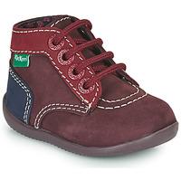 鞋子 女孩 短筒靴 Kickers BONBON-2 紫罗兰 / 红色 / 海蓝色