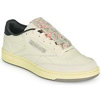 鞋子 男士 球鞋基本款 Reebok Classic CLUB C 85 米色 / 黑色