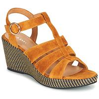 鞋子 女士 凉鞋 Adige FLORY V4 UNDER SAFRAN 黄色