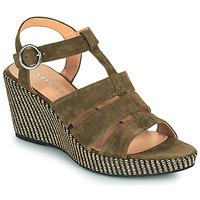 鞋子 女士 凉鞋 Adige FLORY V5 VELOURS MILITAIRE 卡其色