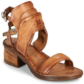 鞋子 女士 凉鞋 Airstep / A.S.98 KENYA BUCKLE 驼色