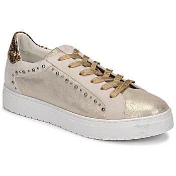鞋子 女士 球鞋基本款 Regard HAVRES 金色