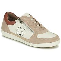 鞋子 女士 球鞋基本款 Damart 68010 白色