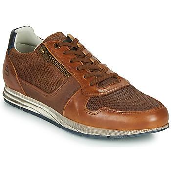 鞋子 男士 球鞋基本款 Bullboxer 477K26343FKNCG 棕色