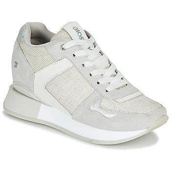 鞋子 女士 球鞋基本款 Gioseppo RALEIGH 白色