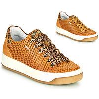 鞋子 女士 球鞋基本款 Primigi (adulte) SHOUHAI 驼色