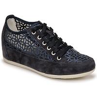 鞋子 女士 球鞋基本款 Primigi (adulte) ANINOMA 蓝色