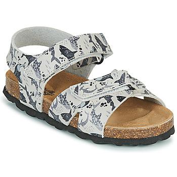 鞋子 男孩 凉鞋 Citrouille et Compagnie OMAYO 灰色